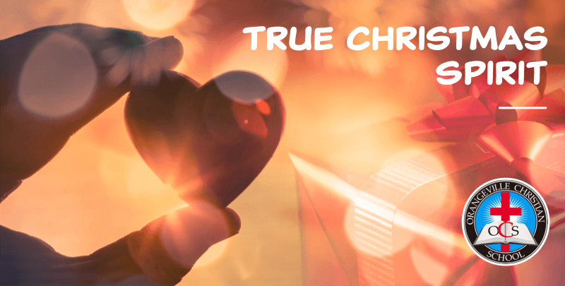 True Christmas Spirit